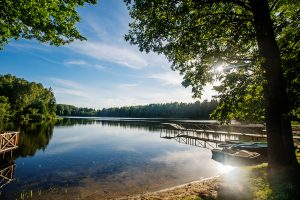 Žiedelio ežeras.